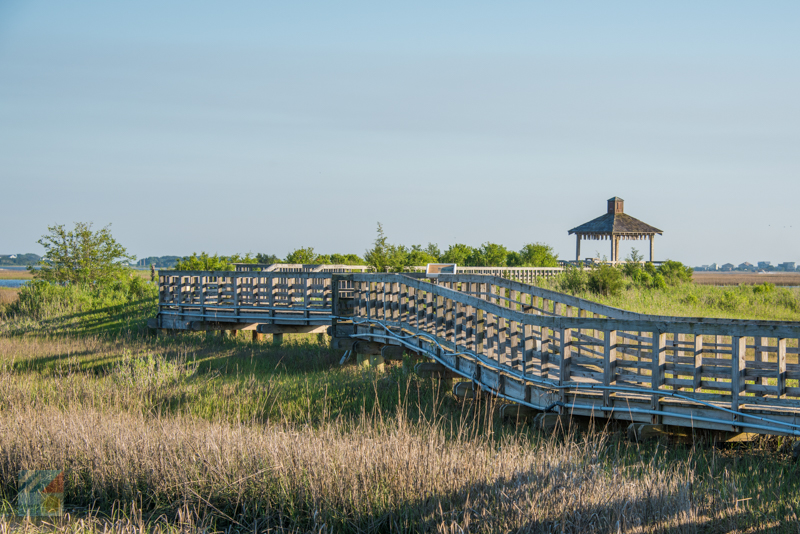 A view from the Marsh Walk in Southport, NC